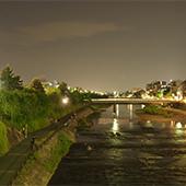 kyotoshi