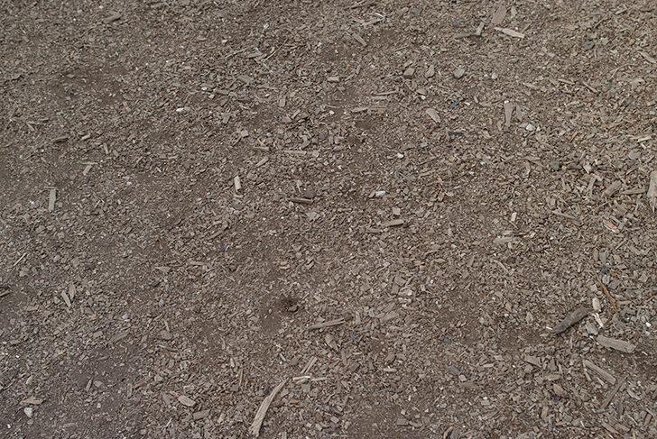 土の商用利用可フリー写真素材169 | フォトック