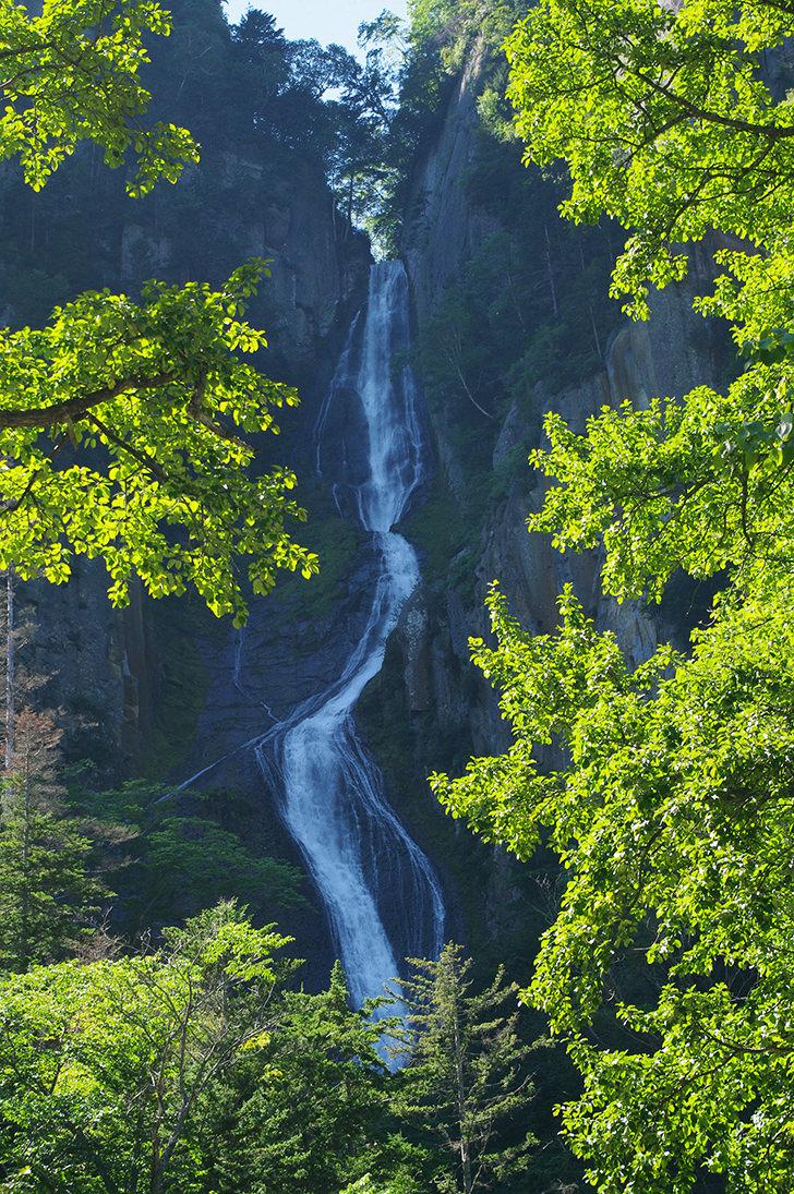 Waterfall Free Photo