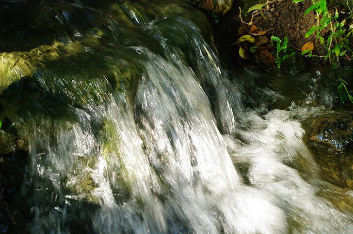 Waterfalla cascade Free Photo