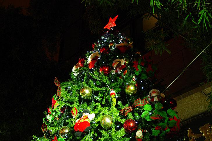 クリスマスの商用利用可フリー写真素材一覧 フォトック