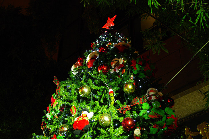 Christmas Free Photo