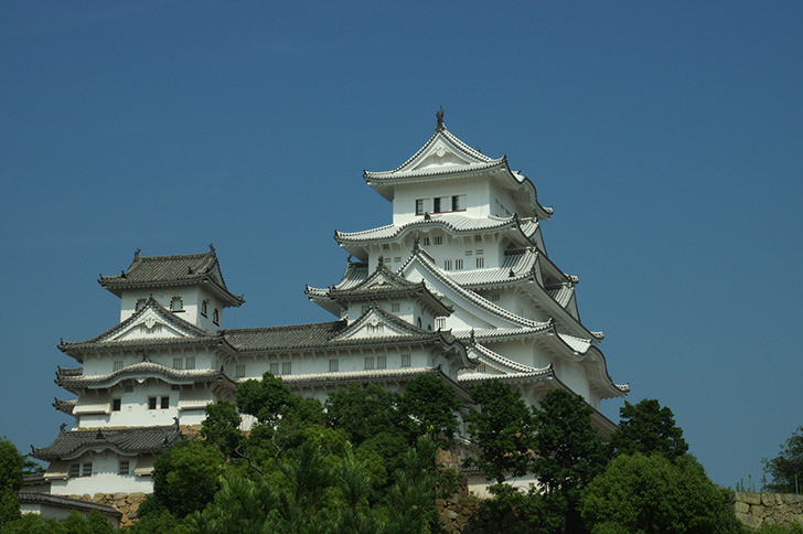 姫路城の画像 p1_39