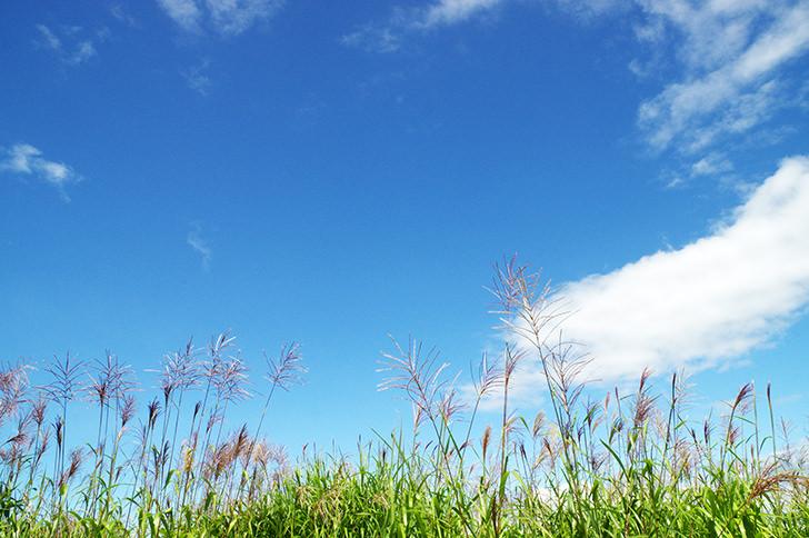 空と自然の商用利用可フリー写真素材2513 | フォトック