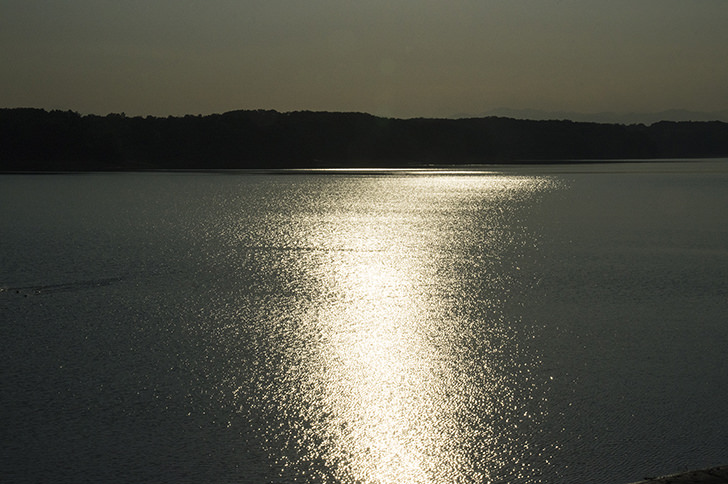 Tama Lake Free Photo