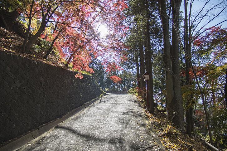 Asakurayama Free Photo