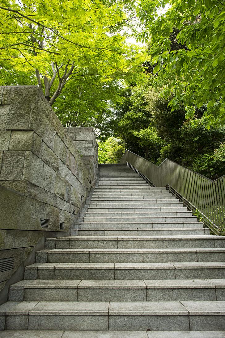 公園の階段の商用利用可能なフリー写真素材