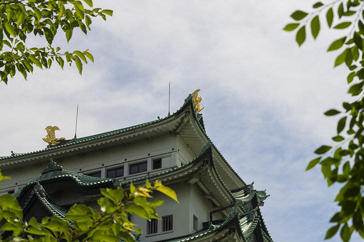 Nagoya Castle Free Photo