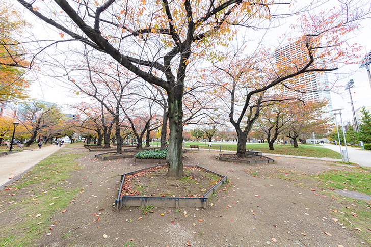 Kinshi Park Free Photo