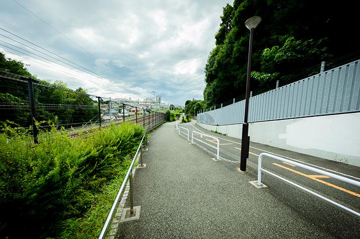 Kokubunji Free Photo