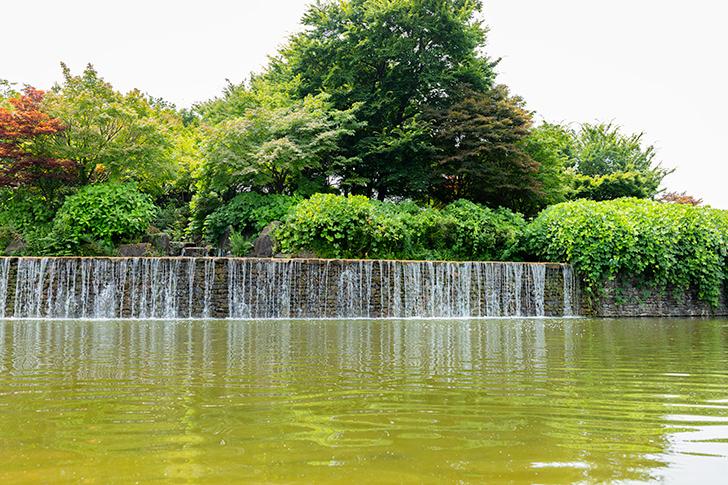 Pond Free Photo