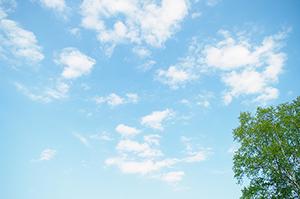 空と木のフリー写真素材 「空と木」のフリー素材ダウンロード  空と木の商用可フリー写真素材 36