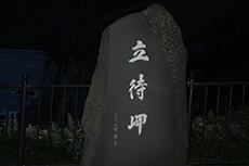 Tachimachimisaki