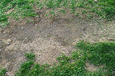 地面のフリー写真素材