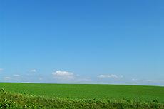 草原のフリー写真素材