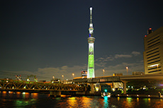 night view of Sky Tree