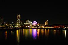 象の鼻パークから見る横浜の夜景のフリー写真素材