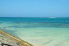 沖縄の海のフリー写真素材
