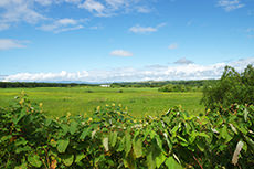 北海道の自然と空のフリー写真素材