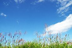 空と自然のフリー写真素材