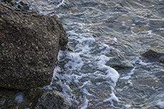土のフリー写真素材