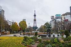 大通公園とテレビ塔のフリー写真素材