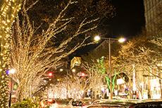 night view in Tokyo Omotesando