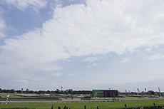 中山競馬場のフリー写真素材