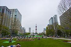 大通公園のフリー写真素材